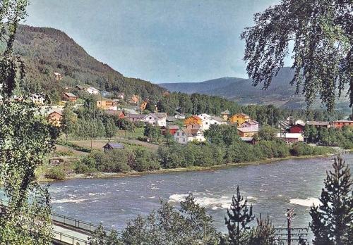 dgnvinstra1970