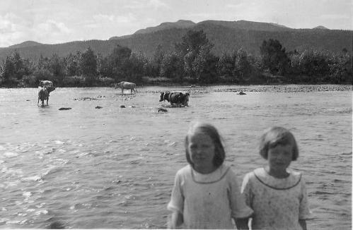 Olstappen 1933. Kua vasser den gamle ruta i staden for å bruke brua. t.h: Olaug Askheim