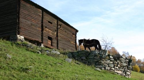 Hestevandring (fotomontasje)