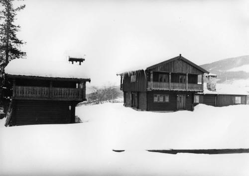 Israel Krupp kjøpte Tofte Høilidshotell etter at det brann. Han bygde seg villa på tomta.