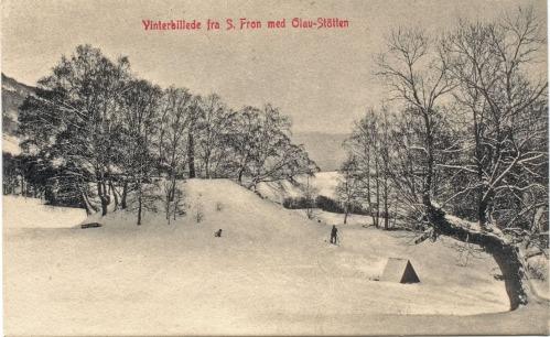Vinderbilde av Olavshaugen med skiløpar og hund
