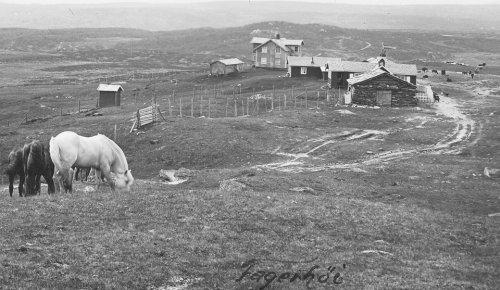 Vestover frå Fagerhøy