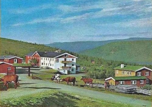 dgnwadahl1965