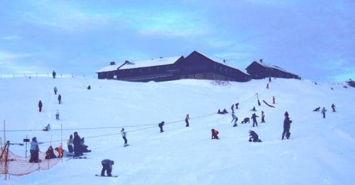 Skuleunger på Fagerhøy