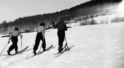 Gyntløpet 1936