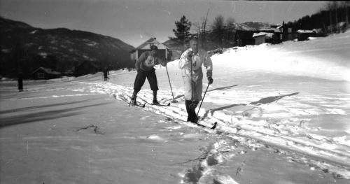 Langrenn Januar-februar 1946