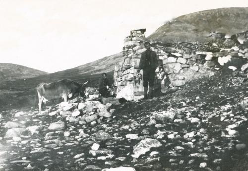 Rypejakt Vuludalen 1910
