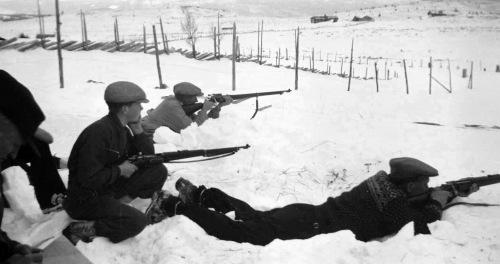 Terengskyting, Sulsæter 1940