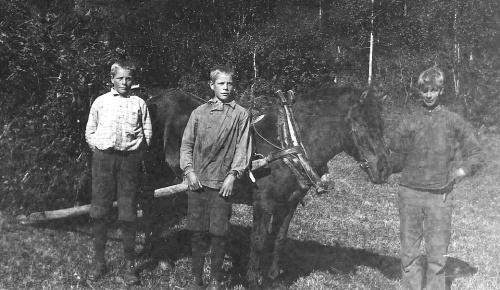 Ragnar, Thor og Iver Veslum