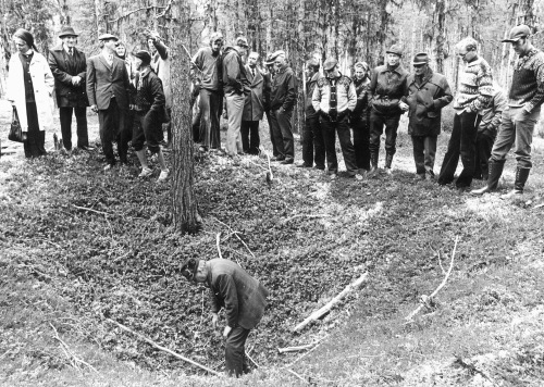 I Fron er det mange gamle minner om ei tid da fangst av vilt gav viktig næring. Her er Odd Kjorstad i bunnen av en elgggrav i Skåbu under en markdag i Fron Historielag i 1977.