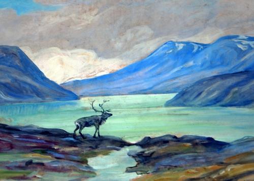 Norsk høgfjell