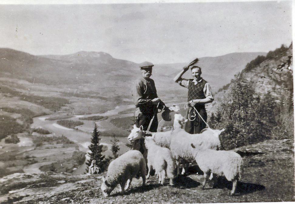 anr-104-kristian-hesteskobakken-og-alfred-hage-pacc8a-sauesanking-i-nedre-skar.jpg