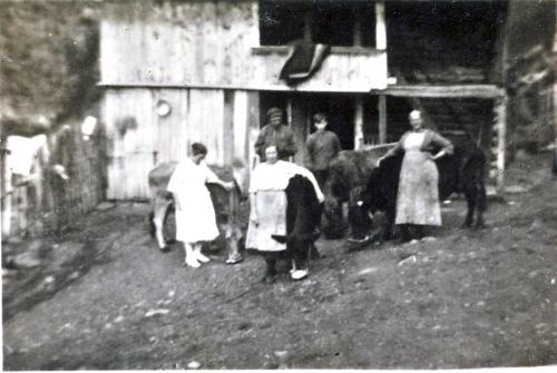 aNr. 114 Fra Nedre Skar ca. 1920