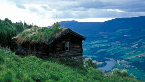 Øvre Skar. På ei lita hylle oppe i fjellsida lå det tre Skar garder fram til 50 tallet.  De siste flyttet fra rundt 1960