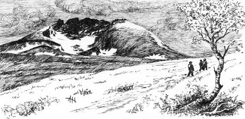 Tegning: Amund Hagen